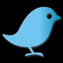 Icon of a twitter bird